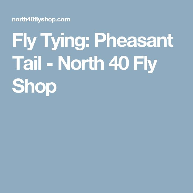 Fly Tying: Pheasant Tail - North 40 Fly Shop