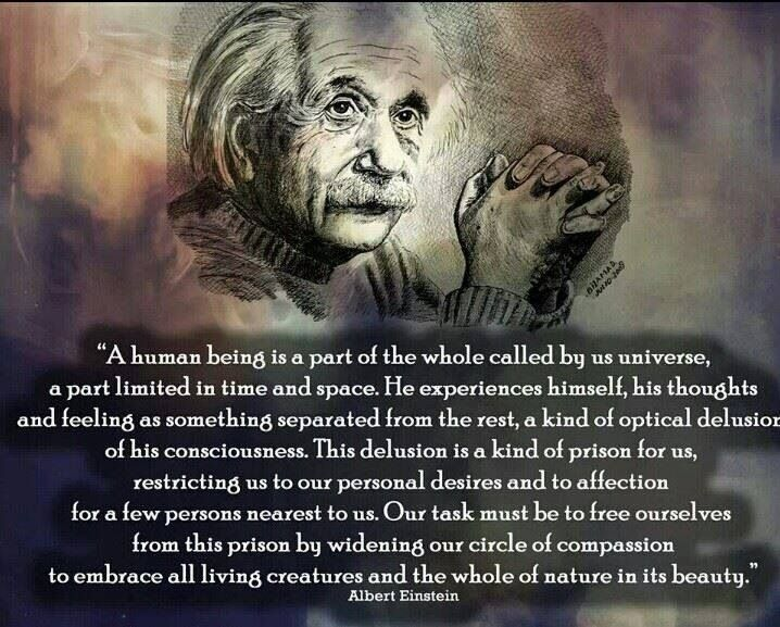 albert einstein and his brilliant mind Albert einstein he published the first part of his theory — special relativity — in the german physics journal annalen der physik in 1905 and completed his theory of general relativity only.