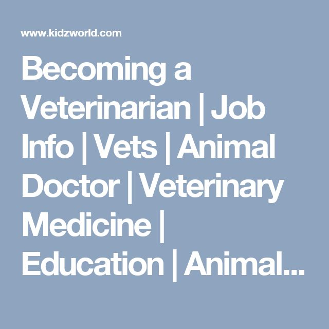 Becoming a Veterinarian   Job Info   Vets   Animal Doctor   Veterinary Medicine   Education   Animals   Pet Health