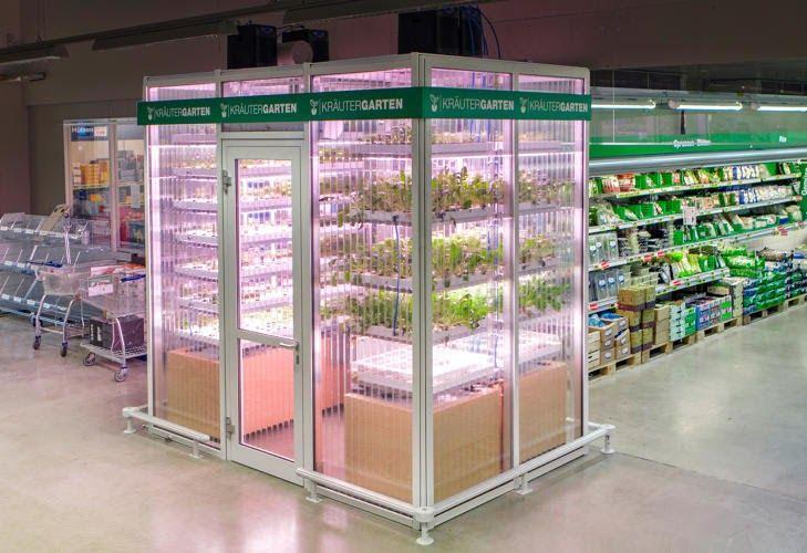 Fonte: Autossustentável 6 • 04 • 17 Imagine só: você está fazendo compras e lembra que precisa de um manjericão, hortelã ou uma salsinha. E...