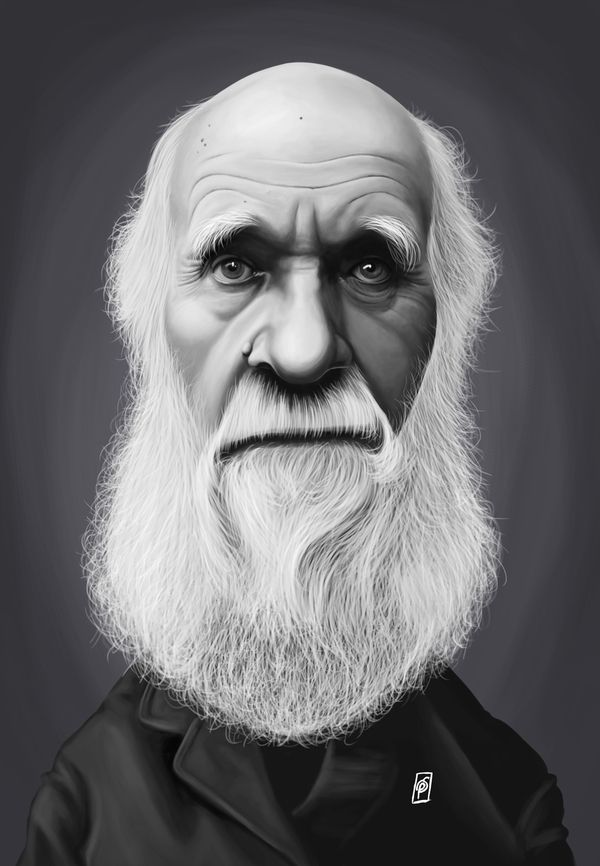 Charles Darwin art | decor | wall art | inspiration | caricature | home decor | idea | humor | gifts