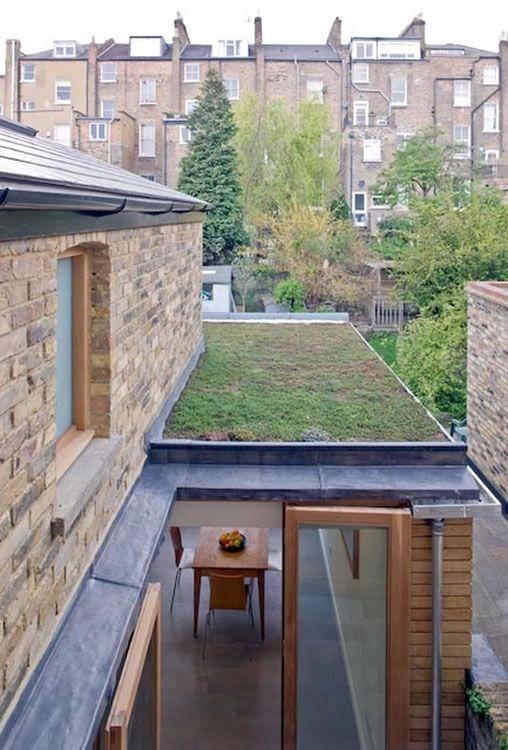 sedum roof - extension - Balfour Rd, Highbury, London - Prewett Bizley
