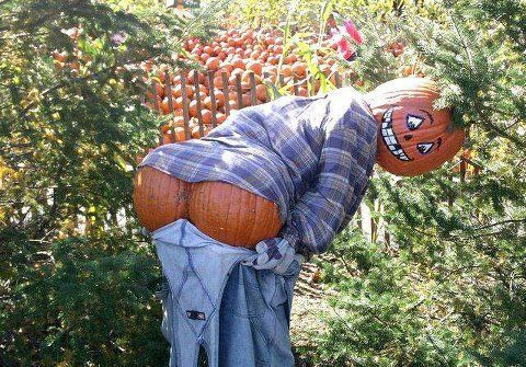 Harvest moon? HA HA - More Funny Pictures at: http://MoronsAreEverywhere.Com