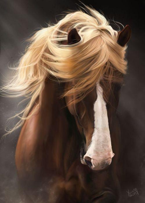 Horse with beautiful mane.