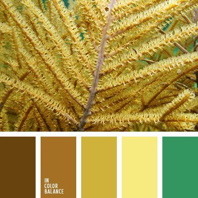 желтый, зеленый, изумрудный, нежные оттенки пастели, нежные пастельные тона, оттенки коричневого, подбор цвета, светло-коричневый, серо-зеленый, темно-коричневый, теплые оттенки коричневого, цвет охры, цветовое решение для дома, шоколадный.