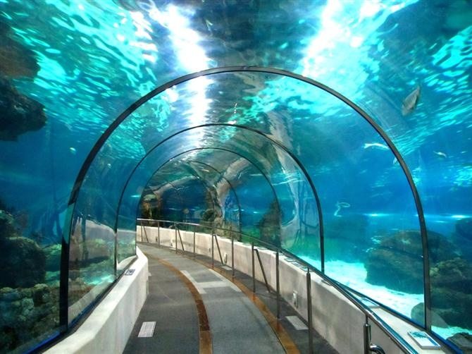 Aquarium Sea Life de Benalmadena (Andalousie - Espagne)- maybe visit during holiday