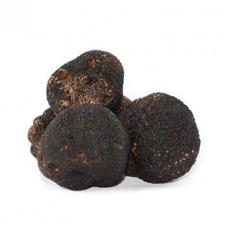 Perigord Black Truffle Fresh 100g