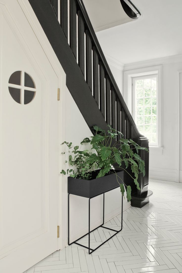 The Plant Box from ferm LIVING is elegant and timeless. The Plant Box can be used for storing everything from plants to books to children's toys and used in all rooms of the house.