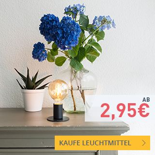 Last Minute Deals - Leuchtmittel. #leuchtmittel #lampen #led #halogen #vorratspack #sale #rabatt