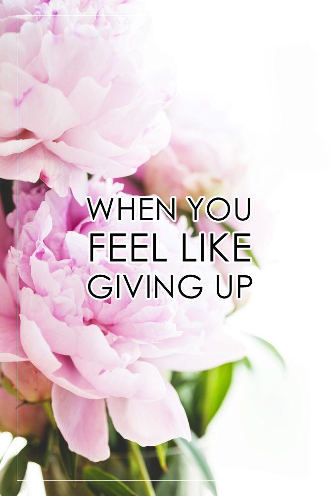 5 things to do when you start feeling like giving up.  http://www.reidunbeate.com/2015/08/25/nar-du-foler-for-a-gi-opp/
