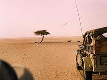 The Ténéré Tree (French: L'Arbre du Ténéré) was a solitary acacia, of either Acacia raddiana[1] or Acacia tortilis,[2] that was once considered the most isolated tree on Earth[3]—the only one for over 400 kilometres (250mi). It was a landmark on caravan routes through the Ténéré region of the Sahara Desert in northeast Niger, so well known that it and the Arbre Perdu or 'Lost Tree' to the north are the only trees to be shown on a map at a scale of 1:4,000,000. The Tree of Ténéré was located…