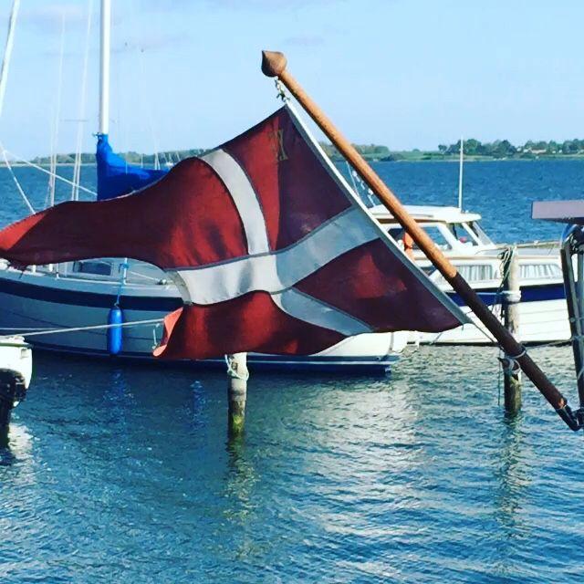 Flag i vind