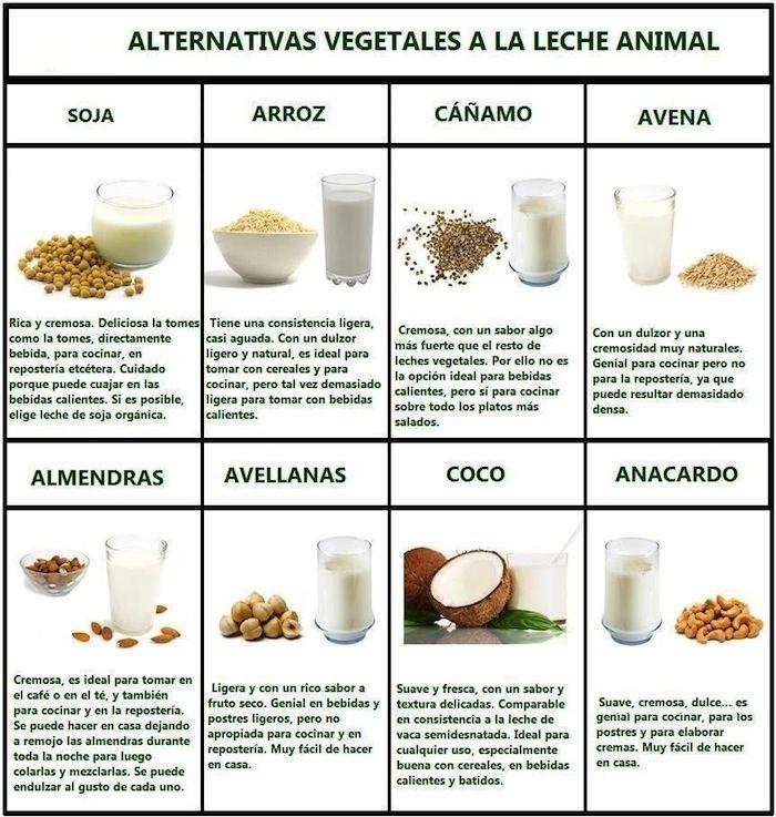 Beneficios para la salud de las leches vegetales