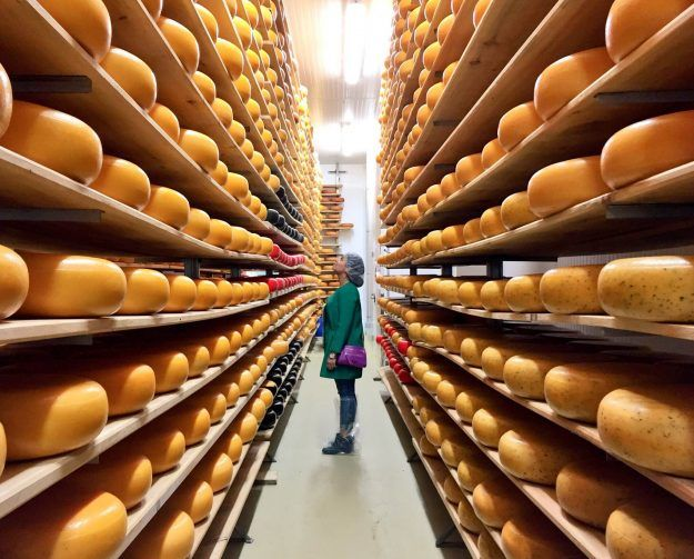 The Curious Creature's Weekend Escape to the Oxford County Cheese Trail