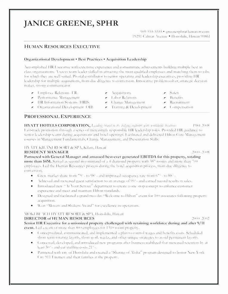 Executive Resume Template Word Awesome Resume format for