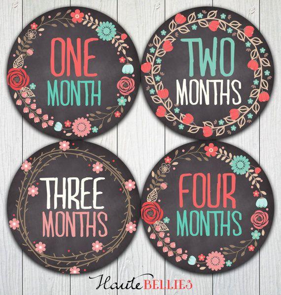Monthly Baby Milestone Stickers Baby Girl Baby by HauteBelliesShop, $10.00