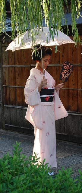 maiko Koyoshi