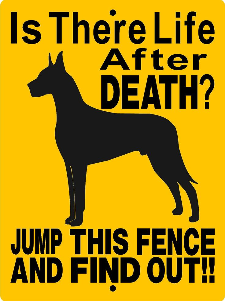 GREAT DANE ALUMINUM DOG SIGN 2514CY