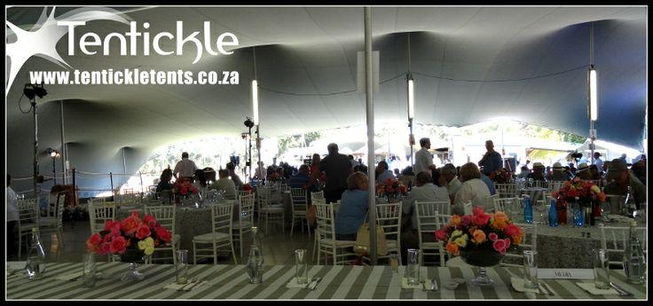 Horse auction in Durbanville