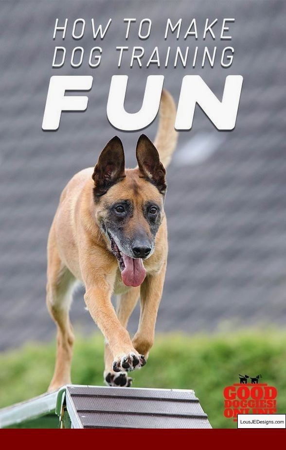 How Can You Train A Dog Not To Bark And Pics Of Training Tips For