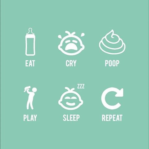WEBSTA @ meyou_andthezoo - Daily routine 🍼💩#baby #life #illustration #parent #mumlife #momthings #love #instagood