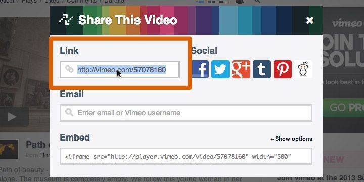 Vimeo share window