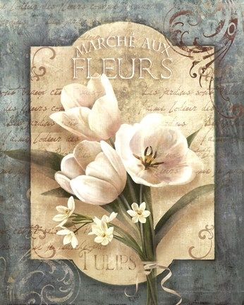 Conrad Knutsen, цветы для декупажа. Обсуждение на LiveInternet - Российский Сервис Онлайн-Дневников