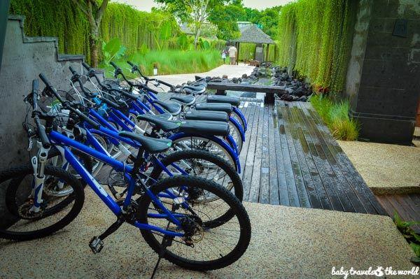 bikes optimized (1 of 1)