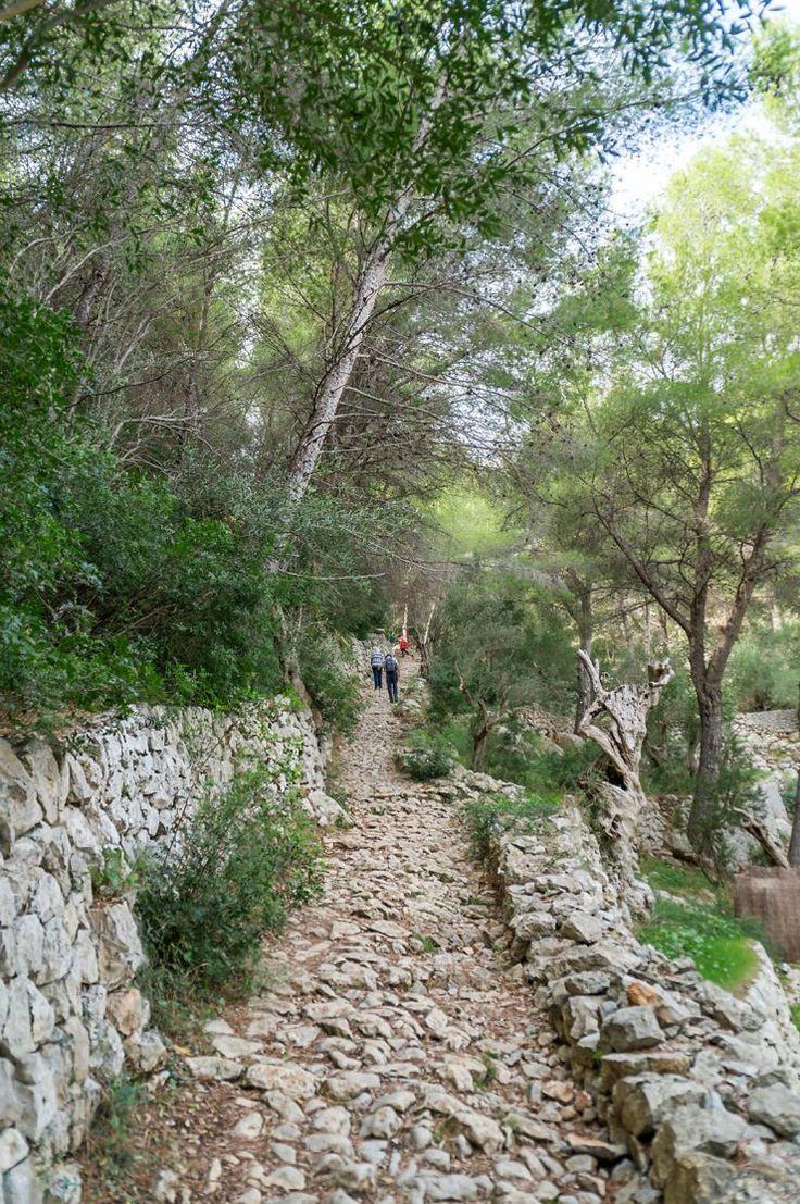 Wandern auf Mallorca - Rundweg Wanderung mit Start und Ziel in Port de Soller