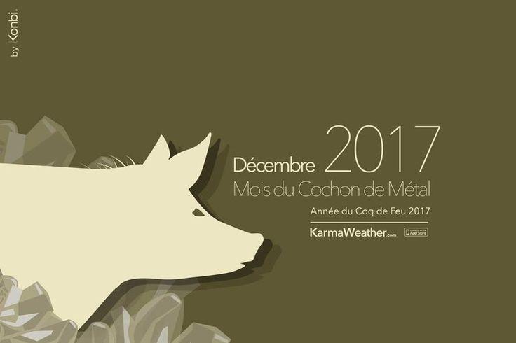 🐷Horoscope du jour gratuit et complet du mois de décembre 2017