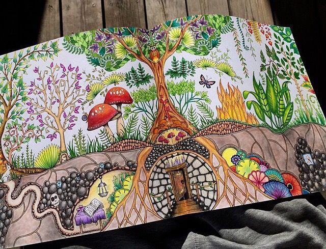 Floresta Encantada Jardim Secreto Enchanted Forest Coloring BookColouring