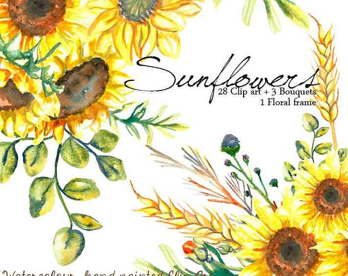 Girasoles clipart, trigo clipart, girasoles clip art marco digital, marco floral invitaciones de boda, flores amarillas despedida de soltera