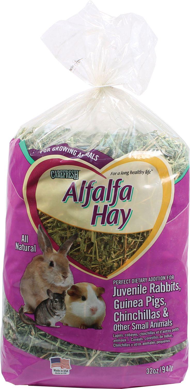 Carefresh Alfalfa Hay