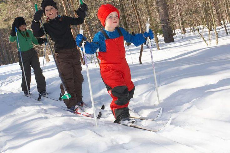 ¿Cuáles son las diferentes partes del Cross-Country Skiing?. El cross country skiing ha sido denominado como una de los mejores ejercicios aeróbicos para todo el cuerpo. Este deporte no solo te da entrenamiento cardiovascular, además no impacta las articulaciones de la rodilla al golpear el piso, ...