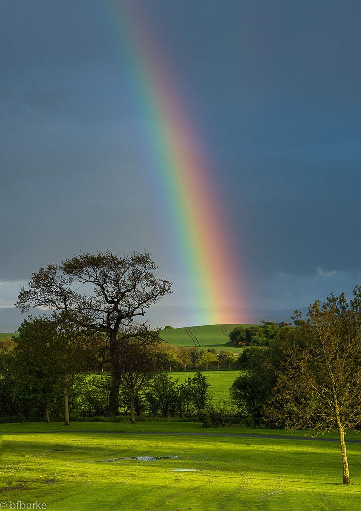 https://flic.kr/p/tcBWpV   Rainbow   One of the brightest rainbows I have seen, looked great against the dark skies and late evening sun.