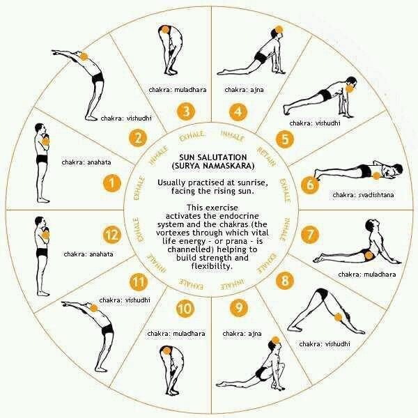 Mejor marca de batido de proteinas: Saludo al sol yoga