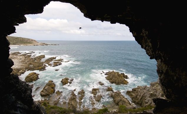 South Africa's 34-mile Whale Trail passes secluded, sandy beaches, tide pools, and sea caves, and has plenty of vantage points for observing the star attraction—the abundant southern right whales that populate these waters between June and December.