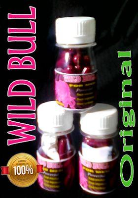 Obat Kuat Herbal: WILD BULL OBAT KUAT PRIA TERPERCAYA