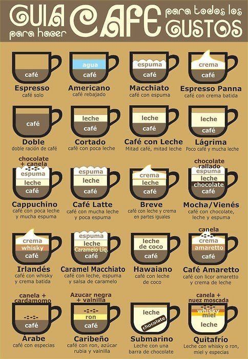 All you need to know about coffee...