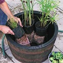 DIY   water garden--Great for a deck or patio :)