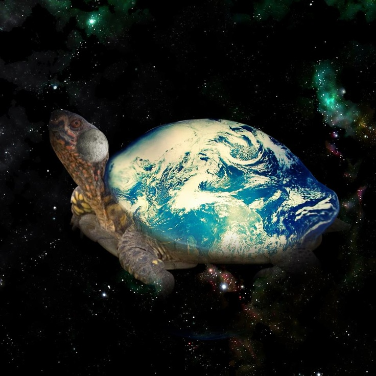 the earth on turtles back Helped transport her as she fell, and the great sea turtle received her on his back here, on the sea turtle's back, she planted bits of the roots and plants she had brought from the sky world and she walked across the turtle's back, planting, praying and creating the earth that we know as turtle island.