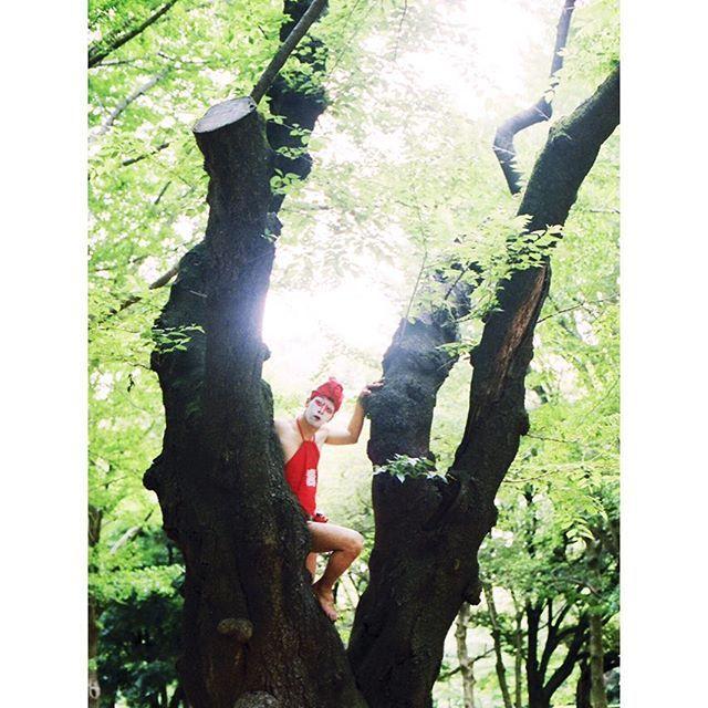 【c.kiyota】さんのInstagramをピンしています。 《寿獅子 . . . #photography #photographer #analogphoto #analogcamera #analogphotography #japan #film #filmphoto #filmphotography #35mm #35mmphoto #35mmfilm #35mmfilmphotography #nikonfm2 #portrait #snap #landscape #art #graphic #god #フィルム #ポートレート #獅子 #寿獅子 #森 #暇を持て余した神々の #遊び》