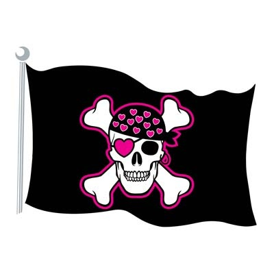 Google Image Result for http://www.partycraze.com.au/images/girls-pink-pirate-flag-party-supplies.jpg