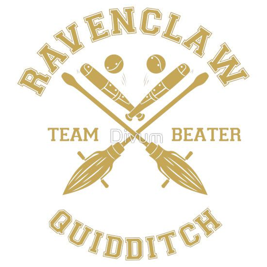 My school had a Harry Potter Book Night and I was the beater on the Ravenclaw Quidditch Team