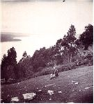 Cover image for Huon River from just south of Castle Forbes Bay