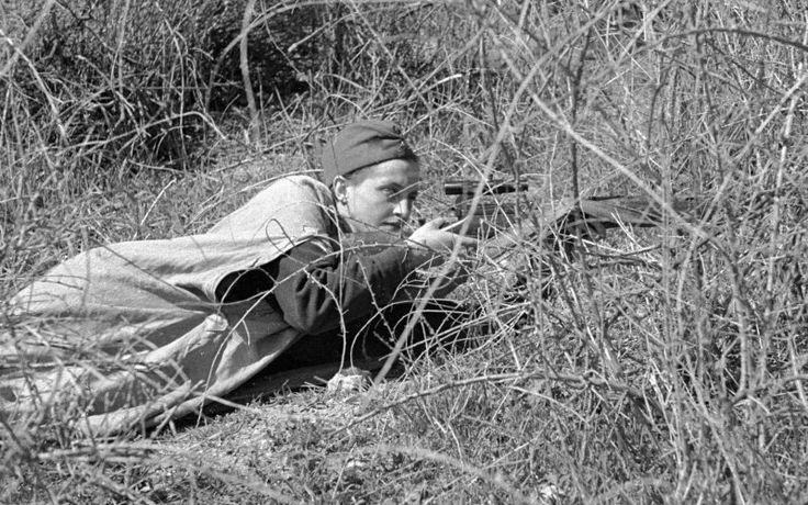 Военный альбом: военные фотографии 1939, 1940, 1941-1945 годов