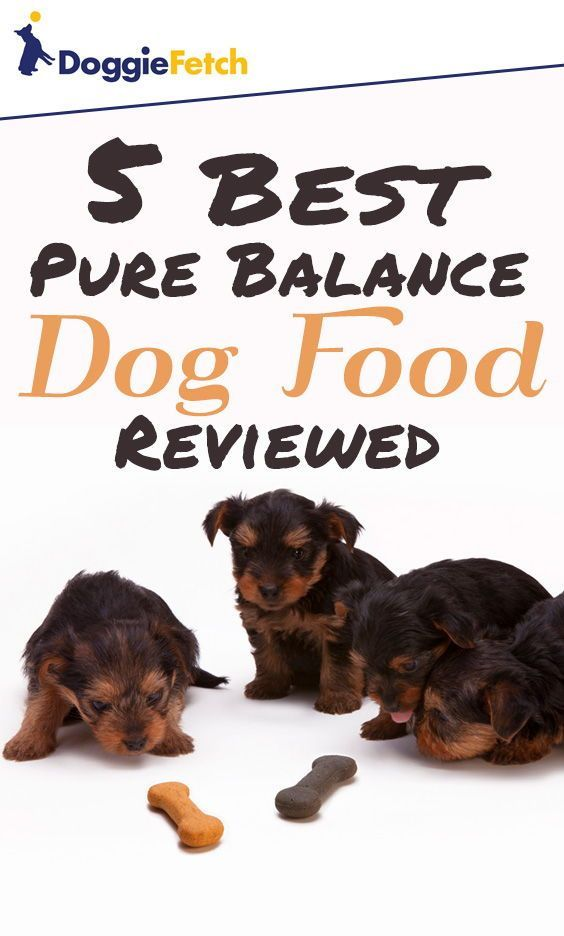 5 Best Pure Balance Dog Food Reviewed 2020 Dog Food Recipes