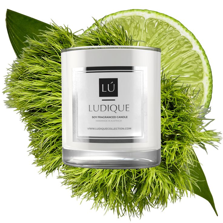 LUDIQUE MAISON FRENCH LIME & LEMONGRASS  Give yourself a great start to your day with a mix of refreshing citrus aromas. Made by combining intense zesty scents of French Lime and Lemongrass this unique fragrance is ideal to awaken your mind. Ideal to use for activities which require you to maintain your focus and stay present in a given moment. Also, it is a good choice of scent if you want to create an atmosphere for studying and working with the new inspired information.  Burn Time: Enjoy…
