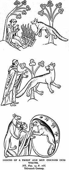 Irish Mythology | ... Irish Legends, Celtic Mythology. Werewolf Myth; werewolves in Ireland