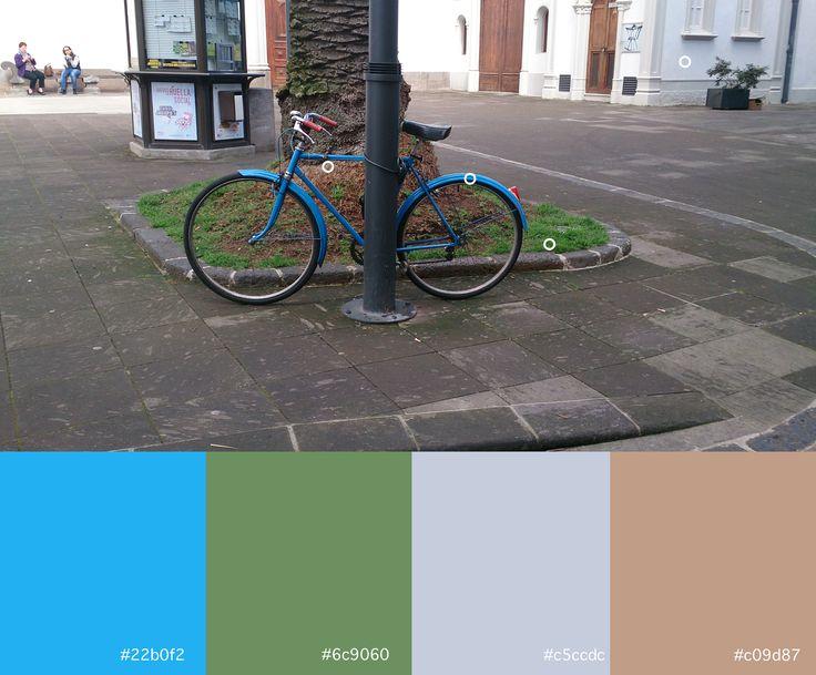 Azul (6) Verde (5) Gris-azulado (1) Marrón (1)